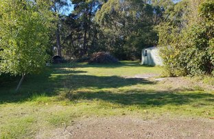 Picture of 394 Gravelly Beach Road, Gravelly Beach TAS 7276