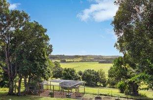 Picture of 61 Scanlan Lane, Lennox Head NSW 2478