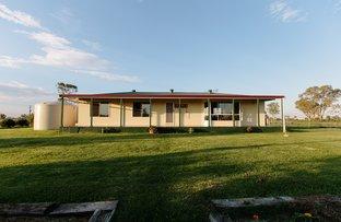 Picture of 451 Kildonan Road, Goondiwindi QLD 4390