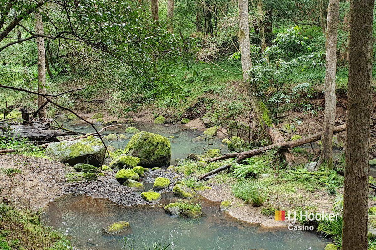 837 Peacock Creek, Bonalbo NSW 2469, Image 2