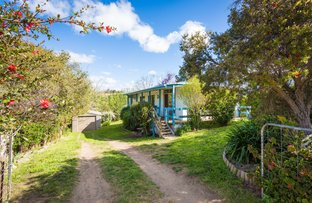 Picture of 18 Eden St, Candelo NSW 2550