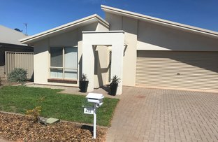 Picture of 412 Jenkins Avenue, Whyalla Jenkins SA 5609