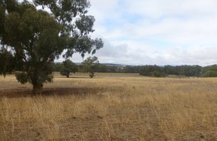 Picture of Lot 221 Nash, Parkes NSW 2870