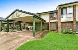6 Fern Court 67 Nerang Street, Nerang QLD 4211