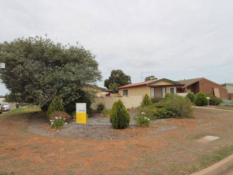 25 East Terrace, Cleve SA 5640, Image 1