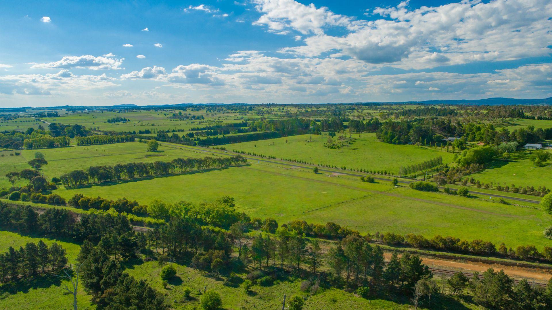 Lot 105 The Pines Estate, Armidale NSW 2350, Image 1