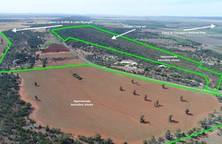 Picture of Farm 2567 McPhersons Road, Beelbangera NSW 2680