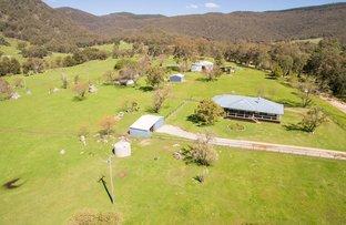 1361 Duncans Creek Road, Woolomin NSW 2340