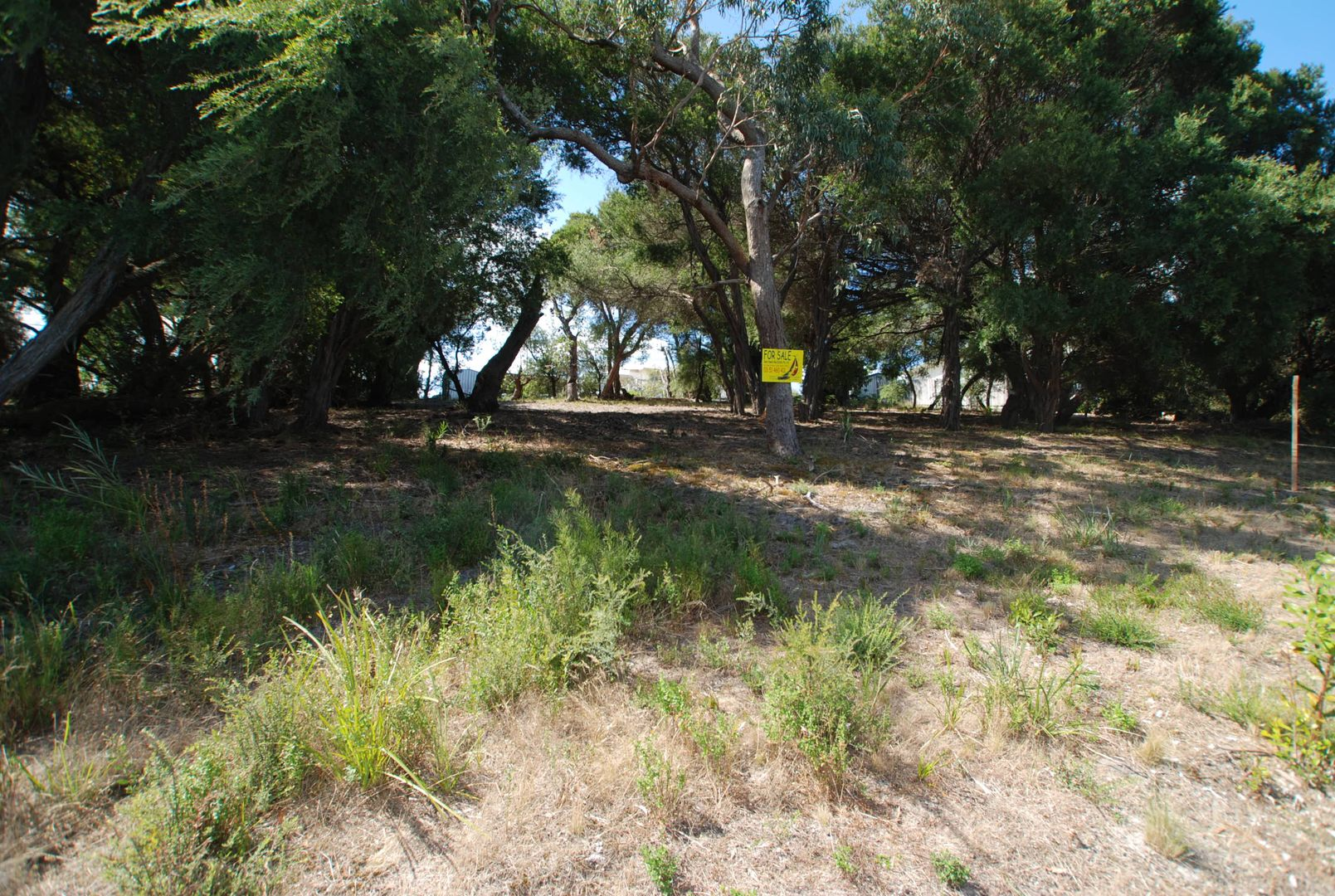 219 National Park Road, Loch Sport VIC 3851, Image 0