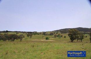 Mountain View, Walcha NSW 2354