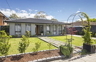Picture of 44 Tarongo Drive, Aspendale VIC 3195