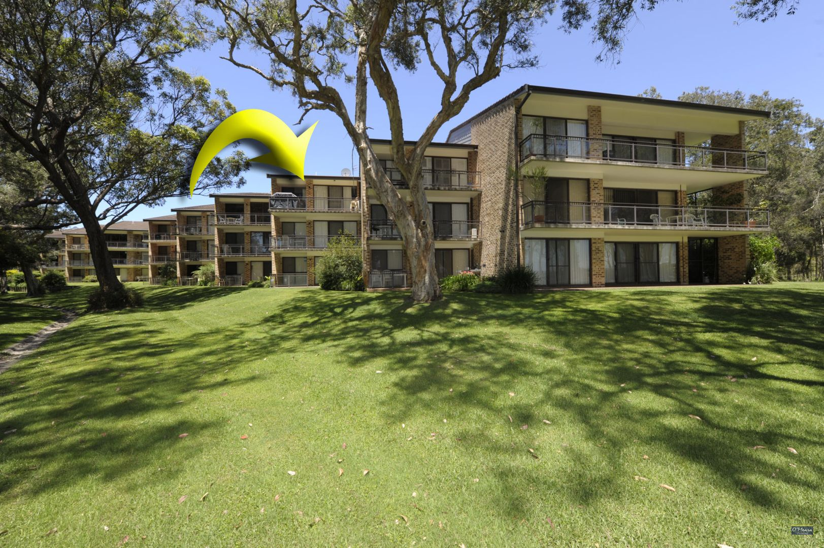 33/2 Gowrie Avenue, Nelson Bay NSW 2315, Image 0