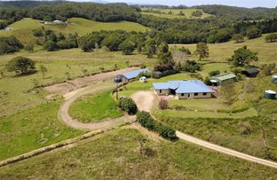 Picture of 3794 Gillies Range Road, Yungaburra QLD 4884