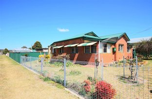 Picture of 43 High Street, Tenterfield NSW 2372