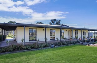 Picture of 561 Baddaginnie - Benalla Road, Baddaginnie VIC 3670