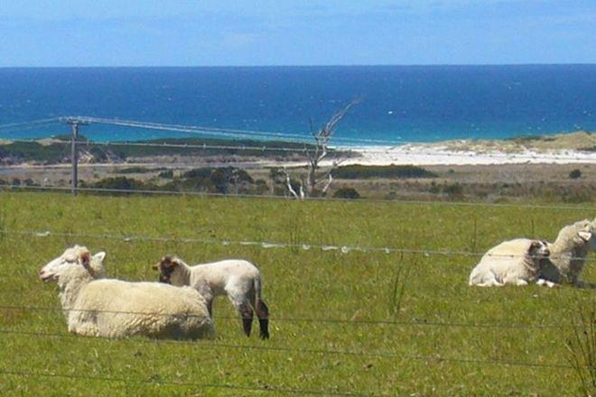 Picture of 19595 Tasman Highway, SEYMOUR TAS 7215