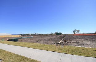 Picture of 21    Lot 102 Richmond Terrace , Plainland QLD 4341