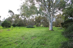 Picture of Lot 101-110 Young Street, Burra SA 5417