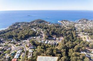 Picture of 16 Lewana Close, Lilli Pilli NSW 2536