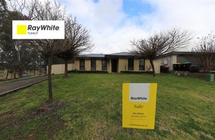 Picture of 54 Quandong Avenue, Tumut NSW 2720