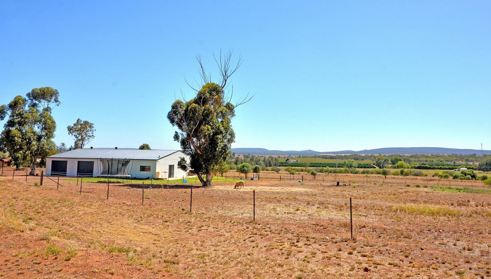 11 Qualitary Rd, Leeton NSW 2705, Image 0