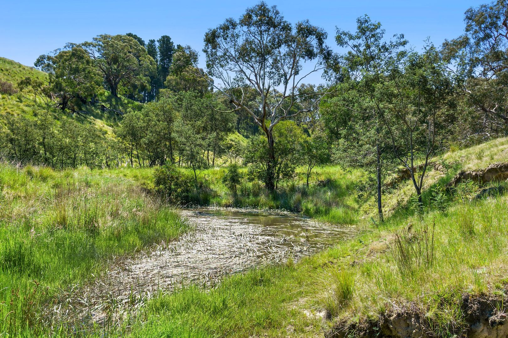 240 Whinray Road, Morrisons VIC 3334, Image 1