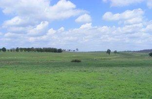 Picture of 541 New England Highway, Glen Innes NSW 2370