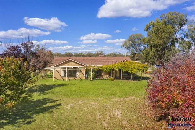 Picture of 723 Auburn Vale Road, INVERELL NSW 2360