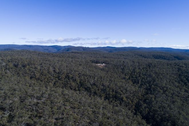 Picture of 11901A Tasman Highway, ROCKY HILLS TAS 7190