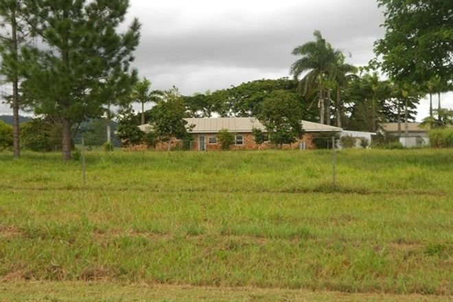 Picture of 115 Daly, CAMP CREEK QLD 4871