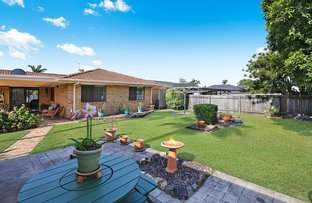 Picture of 12 Kew Place, Minyama QLD 4575