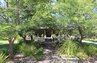 Picture of 1037 Koraleigh Road, Tooleybuc NSW 2736