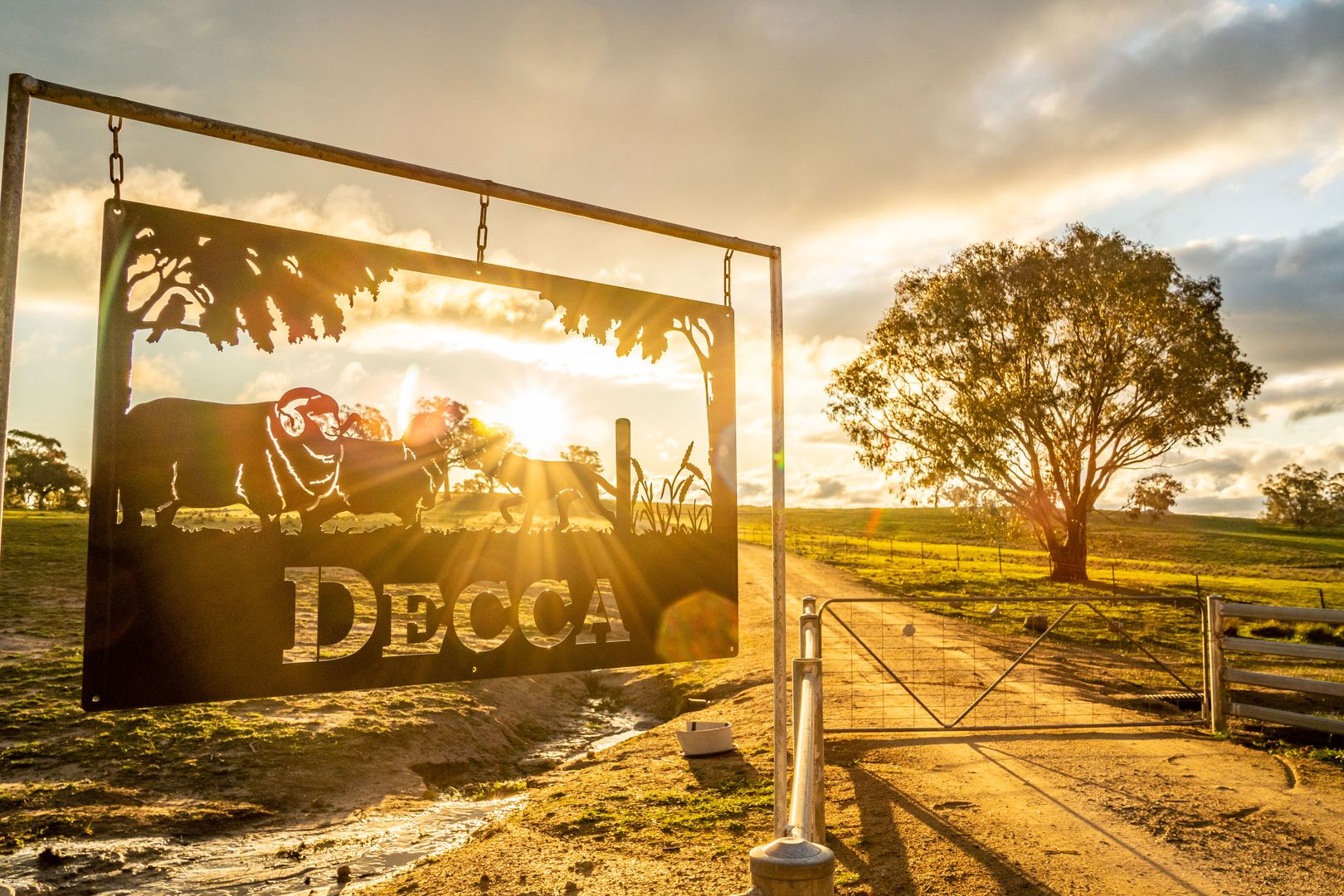 635 Decca Road, Bigga NSW 2583, Image 2