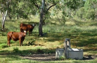 Picture of 2450 ACRES IN TWO LOTS, Jandowae QLD 4410