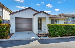 Picture of 13/30 Carmarthen Circuit, Pacific Pines QLD 4211
