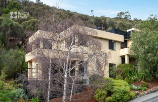 Picture of 20 Gardenia Grove, Sandy Bay TAS 7005