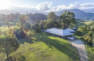 202 Brays Creek Road, Tyalgum NSW 2484
