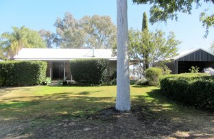 Picture of 9 Carwee Street, Moree NSW 2400