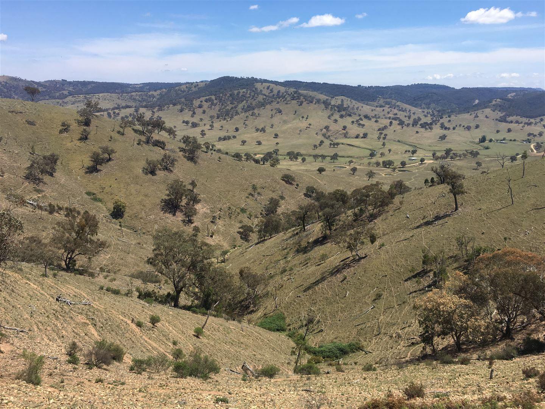 1063 Crudine Rd, Mudgee NSW 2850, Image 0