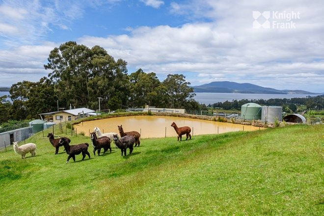 Picture of 25 Moores Road, MIDDLETON TAS 7163