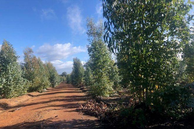 Picture of 2133 Wilga Road, WILGA WEST WA 6243