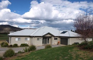 Picture of 620 Back Woolomin Rd, Dungowan NSW 2340