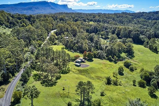 Picture of 574 Blue Knob Rd, BLUE KNOB NSW 2480