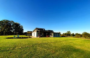 Picture of 14 Whytes Road, St George QLD 4487