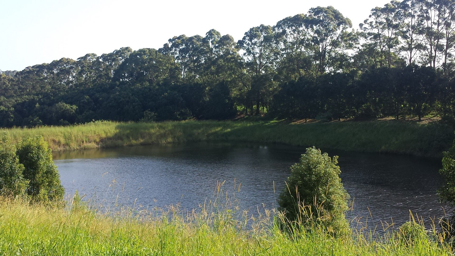 Lot 2/1147 Bruxner Highway, Wollongbar NSW 2477, Image 1