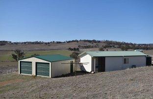 Picture of 187 Tarrawingee Road Mumbil via, Wellington NSW 2820