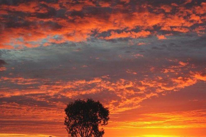Picture of 1 Borehead Road, LIGHTNING RIDGE NSW 2834
