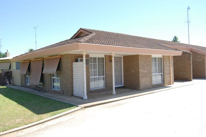 Picture of 3/406 CRESSY STREET, DENILIQUIN NSW 2710