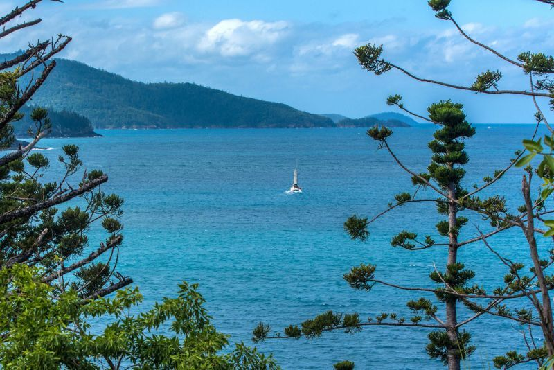 MT/4 Coral Sea Avenue, Hamilton Island QLD 4803, Image 0