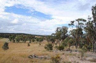 Picture of Lot 5 Back Creek Road, Karara QLD 4352